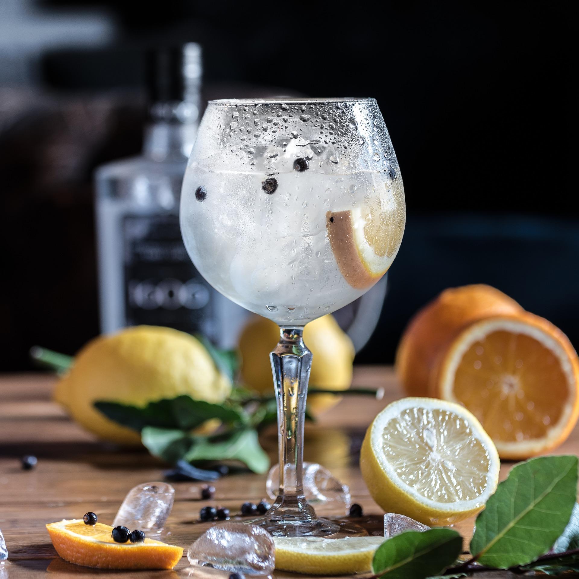 gin fieldfare 3 - gin